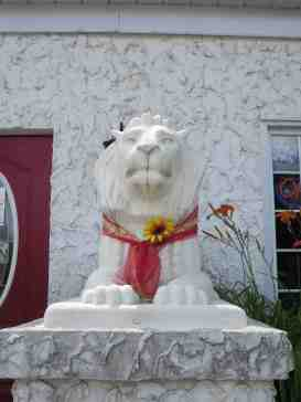 LionSpotting-Teahouse-Orillia-2